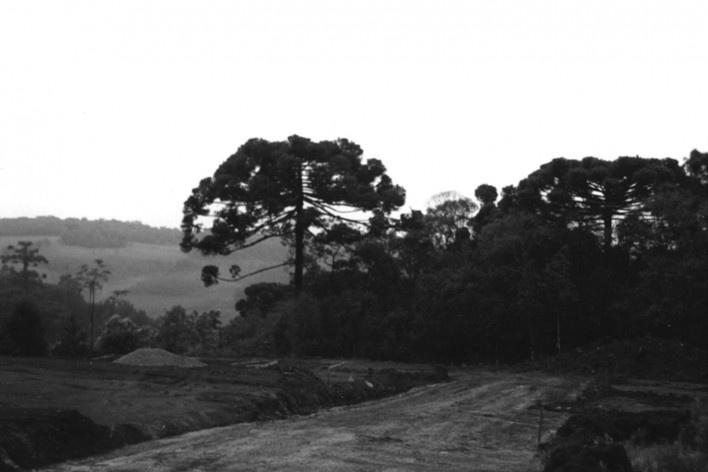 Sequência de obra: preparação do terreno [Acervo Joan Villà]