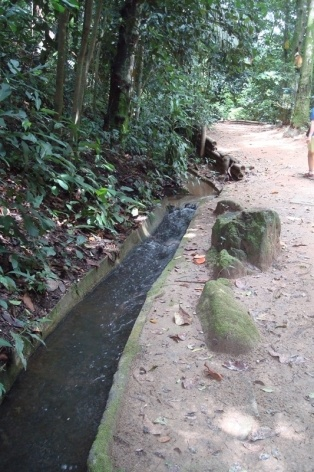 C órrego que nasce na Floresta da Tijuca
