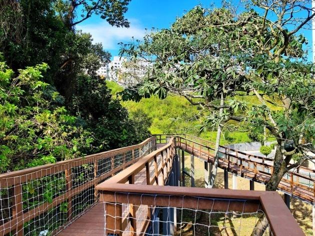 Parque Municipal Nair Bello, imagem da passarela com destaque para maciço arbóreo, São Paulo SP Brasil, 2020. Secretaria Municipal do Verde e do Meio Ambiente<br />Foto divulgação  [Acervo SVMA/DIPO]
