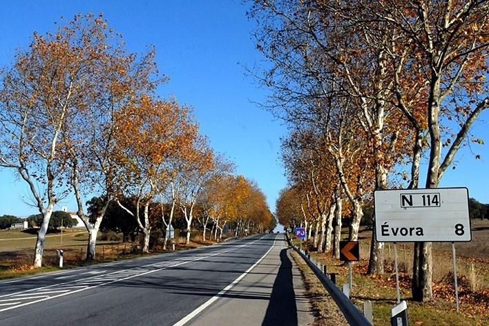 Estrada de acesso à cidade de Évora <br />Foto Junancy Wanderley