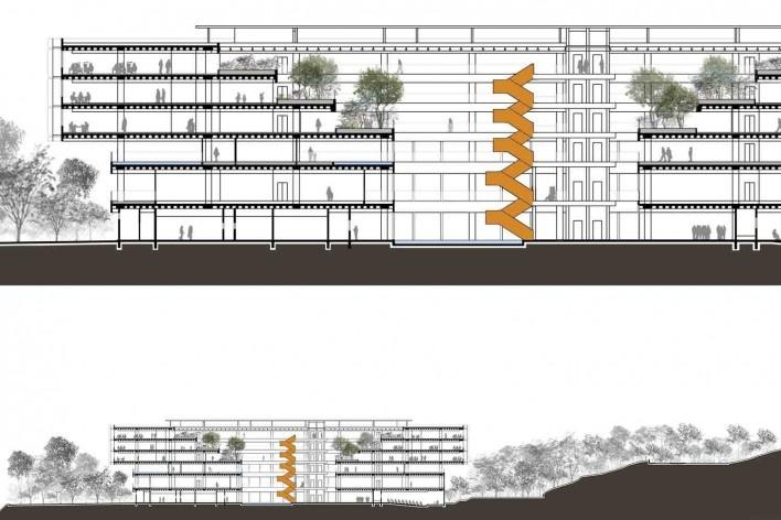 Sede Natura São Paulo – NASP, corte longitudinal (detalhe e integral), São Paulo, 2017. Arquitetos Lilian Dal Pian e Renato Dal Pian<br />Imagem divulgação