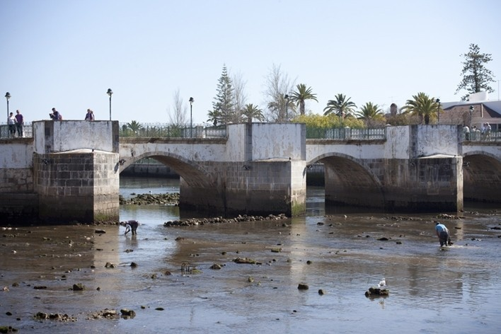 36. Ponte antiga sobre o Rio Gilão, Tavira<br />Foto Eduardo Costa  [Acervo: Arquivo Portugal: 2011-2012]