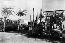 Lucio Costa, Gregori Warchavchik e Roberto Burle Marx: síntese entre arquitetura e natureza tropical (1)