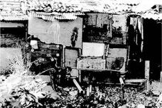 Estética das favelas (1)