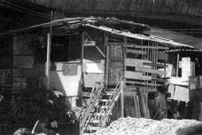 Mocambo e favela
