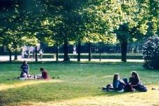 Áreas Verdes: um elemento chave para a sustentabilidade urbana
