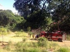 Reintegração de posse do terreno do Parque AugustaFoto Vinícius Martins