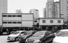 Territórios da fronteira entre memória e história em São Paulo