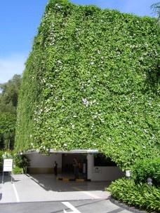 Jardins Verticais – uma oportunidade para as nossas cidades?