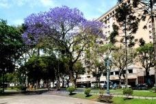 Área calma e espaço para pedestres