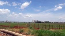 Vista a partir do lado leste da fazenda Olhos d'Água, ao fundo torres de apartamentos na Avenida João FiúzaFoto da autora