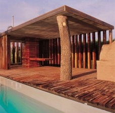 Architectural Zeitgeist in Latin America
