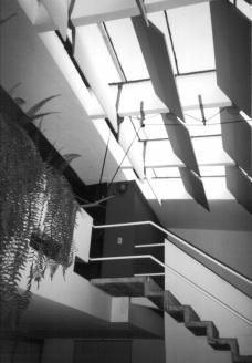 Arquitetura nova brasileira