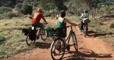 Bicicarreto
