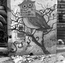 """""""Lixeiras, quando existem, atrapalham o andar. Quando não, o lixo se espalha à vontade"""".Foto Abilio Guerra"""