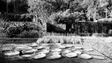 Jardins da Fazenda Vargem Grande. Paisagistas Roberto Burle Marx, Haruyoshi Ono e José Tabacow Foto Guilherme Mazza Dourado, 2016