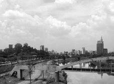 egetação e área permeável nas margens do Rio Pinheiros, São PauloFoto Abilio Guerra