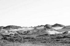 Parque Estadual de ItaúnasFoto divulgação  [EREA 2014]