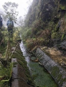 Paisagens fluviais na Colômbia – Workshop Field Stations