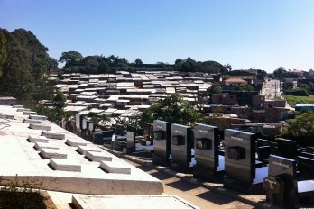 Vida e morte em um cemitério israelita