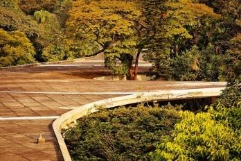"Marquise do Ibirapuera, um projeto de Oscar Niemeyer e equipe Extrato de ""Viver na Floresta"""