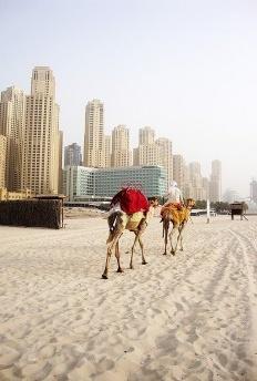Dubai, a terra do Sheik