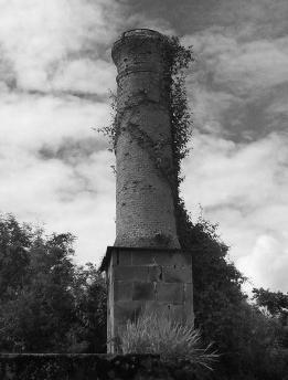 Nas ruínas da Fazenda Ipanema