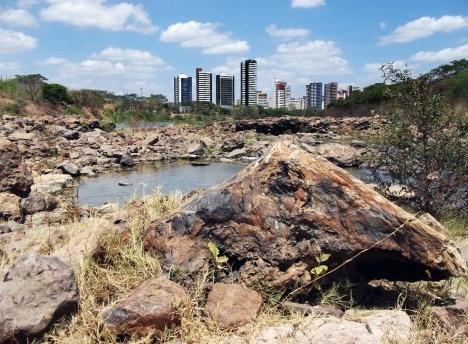 Floresta Fóssil do Rio Poti, Teresina, Piauí, 2012Foto Juan Carlos Cisneros  [Wikimedia Commons]