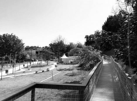 Parque Municipal Nair Bello, imagem da passarela, São Paulo SP Brasil, 2020. Secretaria Municipal do Verde e do Meio AmbienteFoto divulgação  [Acervo SVMA/DIPO]