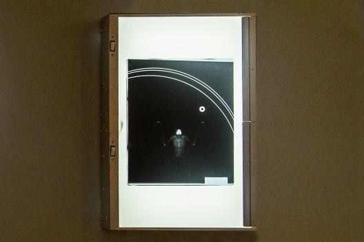 """Negatoscópio com lâmina de raio X com esqueleto de morcego, arames e arruela, peça da exposição """"Melancolia 3"""", de Marco do Valle<br />Foto divulgação"""