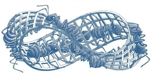 """<i>Fita de Moebius II</i>, M.C. Escher, ilustração do artigo """"Relato de uma escrita possível"""", de Xico Costa, publicado no volume III da coleção <i>Experiências metodológicas para compreensão da complexidade da cidade contemporânea</i>"""
