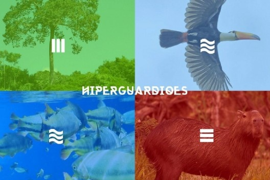 Projeto Hiperguardiões: apropriação crítica das tecnologias para o manejo colaborativo<br />Imagem divulgação  [neblinalab.net]