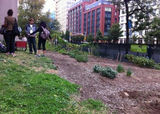Fazenda Urbana NYU: estudantes encerrando o dia de trabalho. <br />Foto Cecilia Herzog