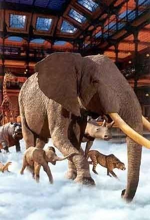 Grande Galeria da Evolução, Paris [folder da instituição]