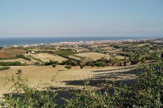 Vista panoramica desde as colinas com o Mar Adriático ao fundo. Nota-se a estrutura da área agrícola circundante à cidade e o seu potencial na formação da rede verde.<br />Foto M. Bocci