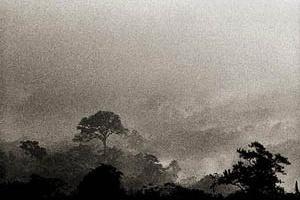 Imagem de Cubatão<br />Ensaio fotográfico de Nelson Kon