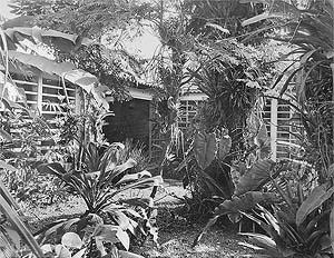 Residência do Arquiteto, 1944. Pátio [Acervo Digital Rino Levi FAU PUC-Campinas]