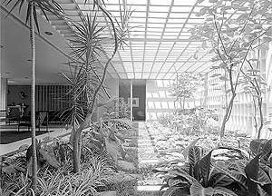 Residência Castor Delgado, 1958 [Acervo Digital Rino Levi FAU PUC-Campinas]