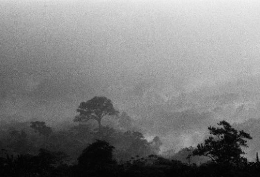 Paisagem de Cubatão<br />Foto Nelson Kon