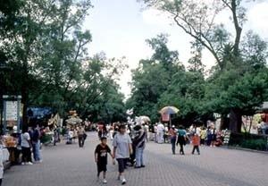 Parque Chapultepec, Cidade do México. Espaço verde público  intensamente utilizado pela população