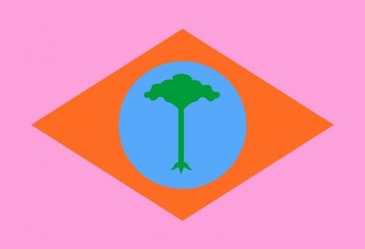 Bandeira síntese da ponte aérea São Carlos – Brasília<br />Concepção Abilio Guerra