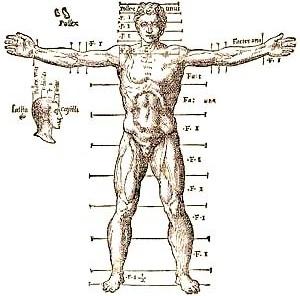 Cânone de proporções de Vitruvius, Andrea Palladio, 1567