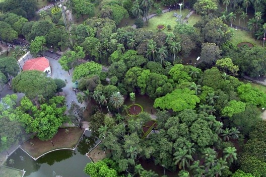 Parque Trianon, São Paulo<br />Foto Nelson Kon