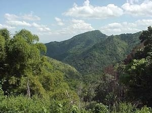 Paisaje Natural Protegido La Gran Piedra [www.santiago.cu]