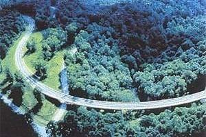 """Os pilares dessa estrutura de concreto """"desaparecem"""" visualmente abaixo do nível da vegetação; e a pista parece flutuar no plano verde da superfície das copas das árvores. Parece que os projetistas da estrada quiseram, além da minimização do impacto dessa [ISTEA. Landscape Architecture, March 1985, p 47]"""