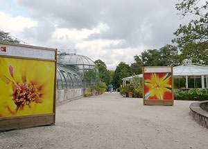 """A estufa - aquário com o famoso nenúfar da Amazônia e a estufa onde se encontram as plantas carnívoras. Vendo-se ainda cartazes da exposição: """"Couleurs, sources de bien-être"""" com fotos de Catherine Blanchard, que percorre todo o parque desde o início do v<br />Foto: Jovanka Baracuhy C. Scocuglia"""