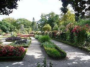 As áreas floridas, os canteiros espalhados pelo parque que proporcionam perfume e coloridos diferenciados<br />Foto: Jovanka Baracuhy C. Scocuglia