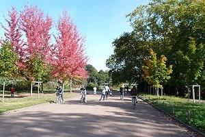 O colorido na paisagem do outono no Parc de la Tête D'Or<br />Foto: Jovanka Baracuhy C. Scocuglia