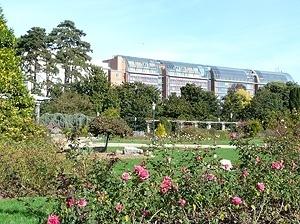Cité Internationale vista a partir dos roseirais do Parc de la Tête D'Or<br />Foto: Jovanka Baracuhy C. Scocuglia