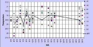 Gráfico 1: Comparação entre as temperaturas registradas em campo e no aeroporto local, pela manhã, com vento sudeste
